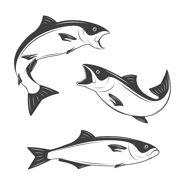 Set van zwart-wit vis Premium Vector
