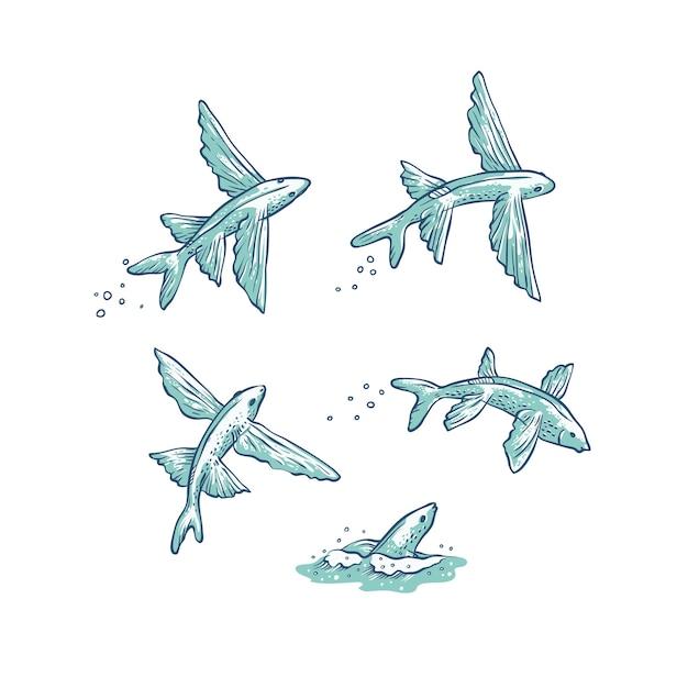 Set vliegende vissen springen, duiken en zwemmen. Premium Vector