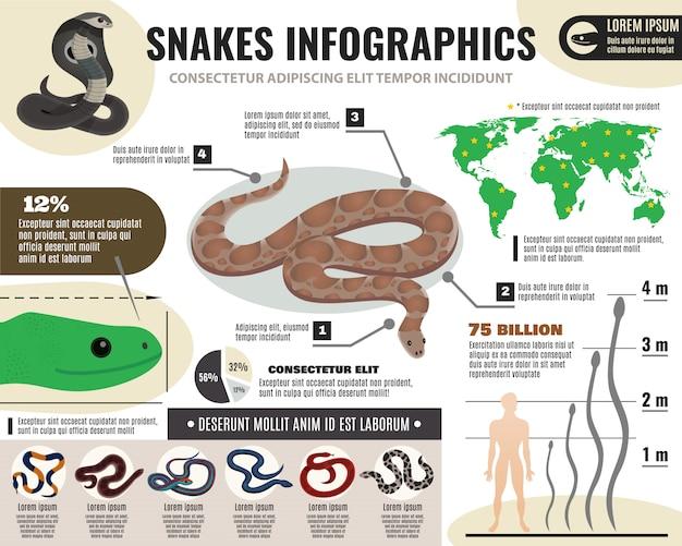 Slangen reptielen infographics Gratis Vector