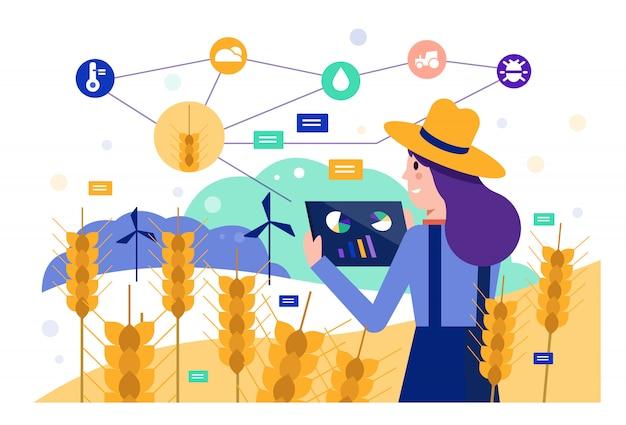Slimme landbouwer die tablet gebruikt om gerstrijstgebied te controleren. Premium Vector