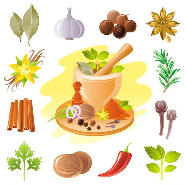 Specerijen en kruiden icon set. voedsel kruiden illustratie. Premium Vector