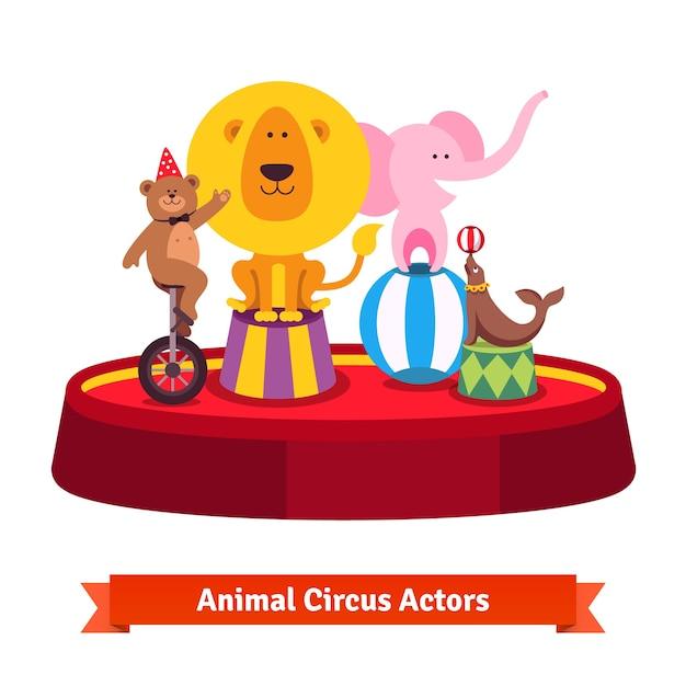 Spelen circusdieren tonen op rode arena Gratis Vector