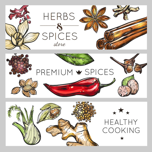 Spice and herb banner set Premium Vector