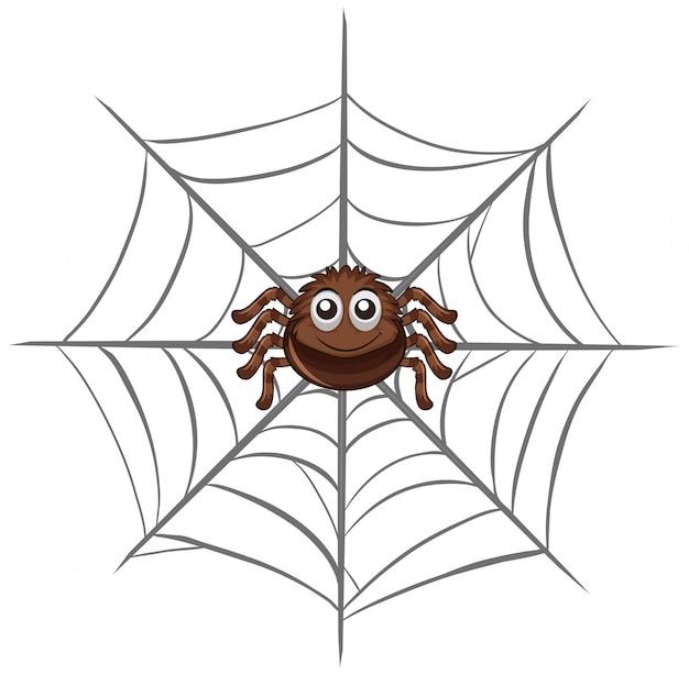 Spin op spinnenweb Gratis Vector