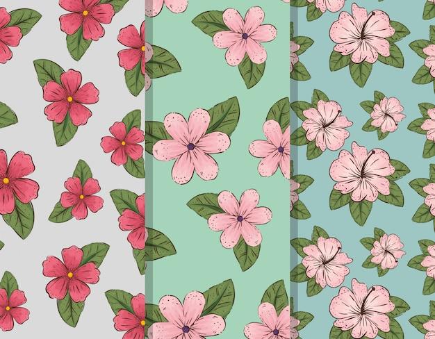 Stel bloemen planten en exotische bladeren Gratis Vector