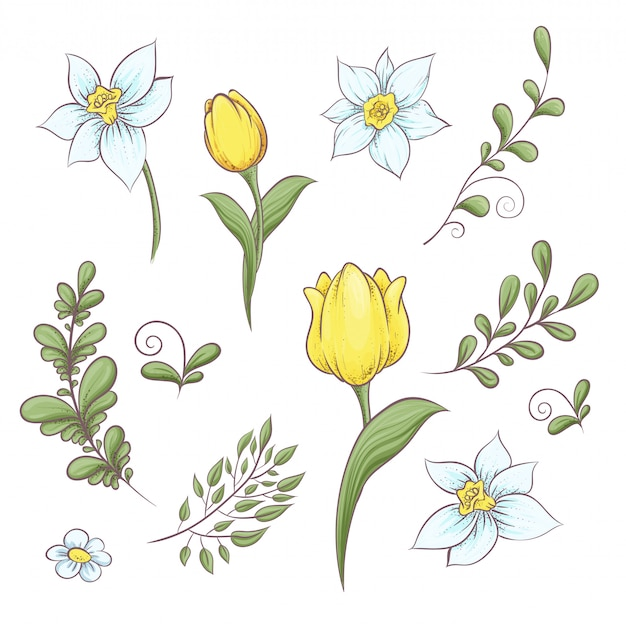 Stel bloemen tulpen Premium Vector