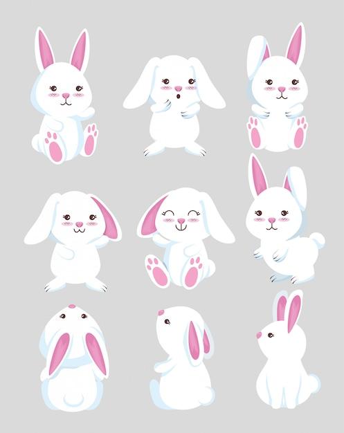 Stel schattig konijn wild dier Gratis Vector