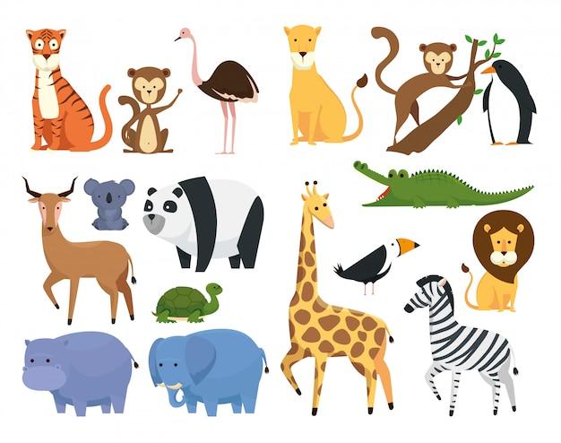 Stel wilde dieren in het safari-reservaat van de dierentuin Gratis Vector