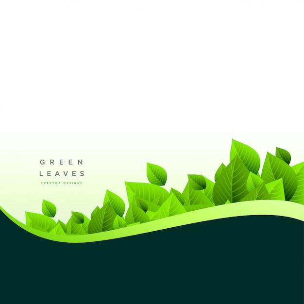 Stijlvolle groene bladeren eco achtergrond Gratis Vector