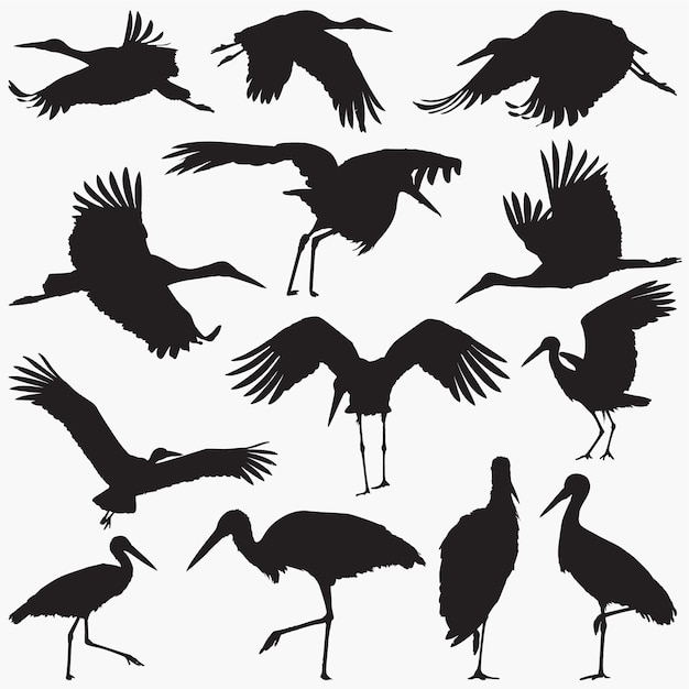 Stork silhouette Premium Vector