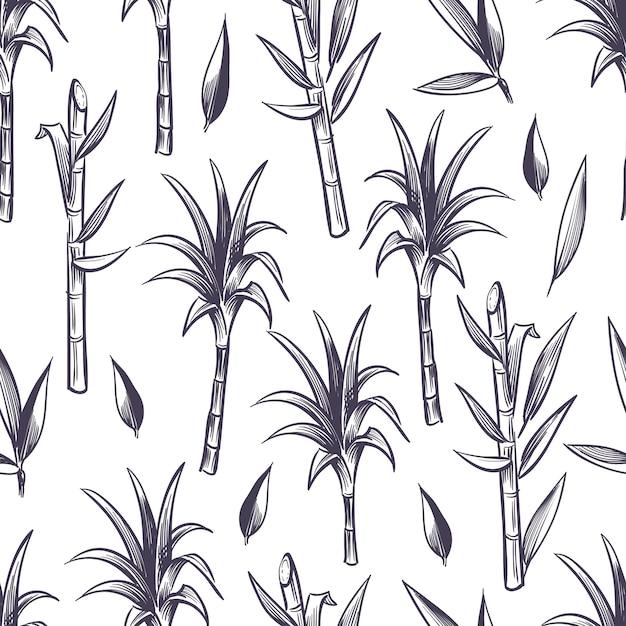 Suikerrietstelen met bladeren, het naadloze patroon van de suikerrietinstallatie Premium Vector