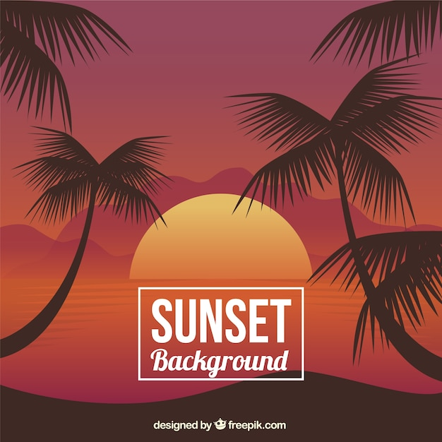 Sunset achtergrond met palmbomen Gratis Vector