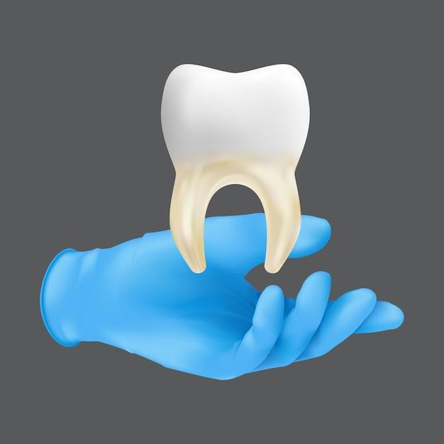 Tandartshand die blauwe beschermende chirurgische handschoen draagt die een keramisch model van de tand houdt. realistische illustratie van het concept van het enten van bot en zacht weefsel dat op een grijze achtergrond wordt geïsoleerd Premium Vector