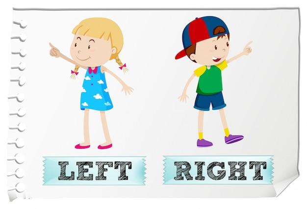 Tegenover de bijvoeglijke naamwoorden links en rechts Gratis Vector