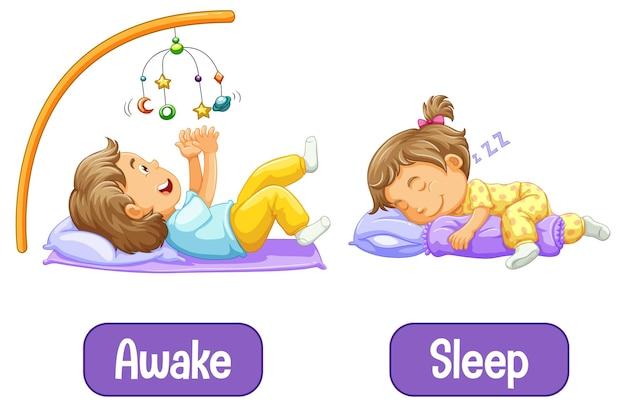 Tegenover woorden met wakker en slaap Gratis Vector