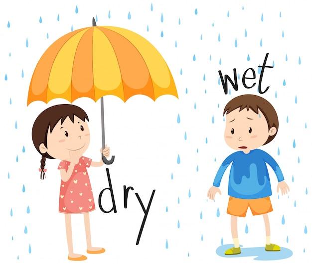 Tegenovergesteld adjectief droog en nat Gratis Vector