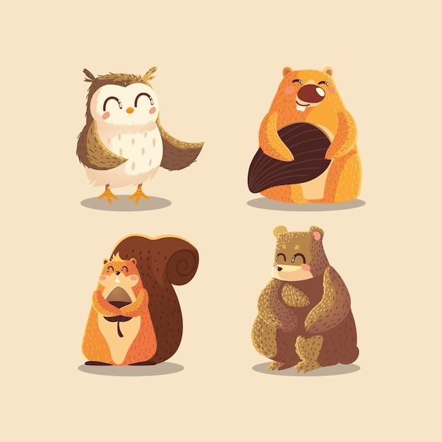 Tekenfilm dieren uil bever eekhoorn en beer wildlife illustratie Premium Vector
