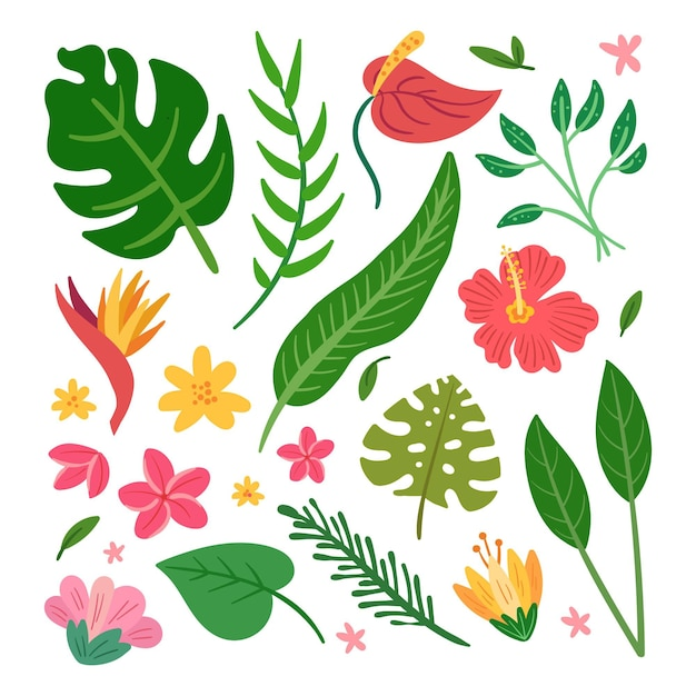 Tropisch bloemen- en bladpak Gratis Vector