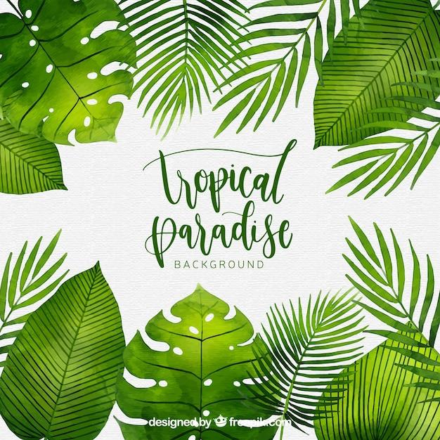 Tropische achtergrond met aquarel planten Gratis Vector