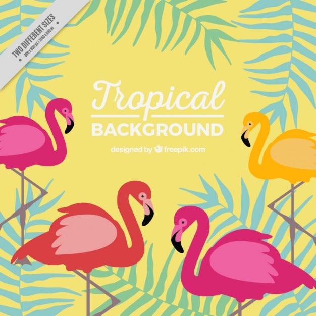 Tropische achtergrond met flamingo's en bladeren Gratis Vector