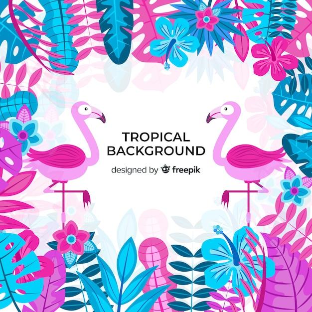 Tropische achtergrond met flamingo's Gratis Vector