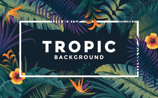 Tropische achtergrond met frame Premium Vector
