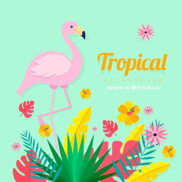 Tropische achtergrond met planten en flamingo Gratis Vector