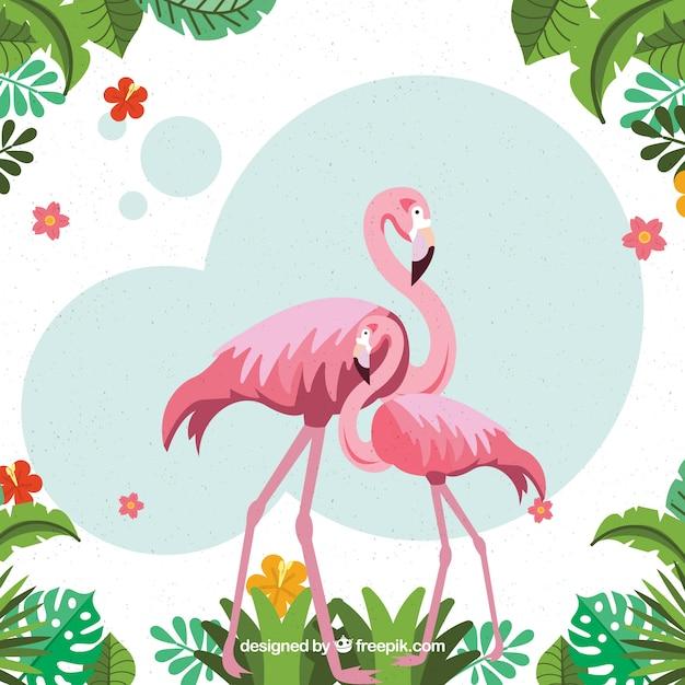 Tropische achtergrond met vogels en planten Gratis Vector