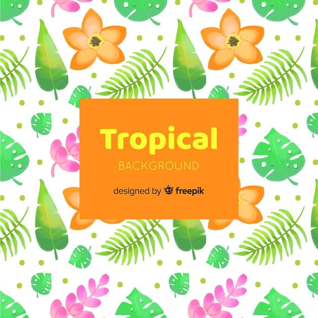 Tropische achtergrond Gratis Vector