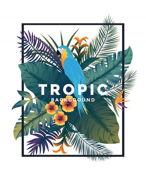 Tropische bakground met frame Premium Vector
