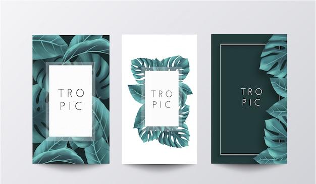 Tropische banner collectie Gratis Vector
