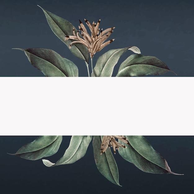 Tropische banner Gratis Vector
