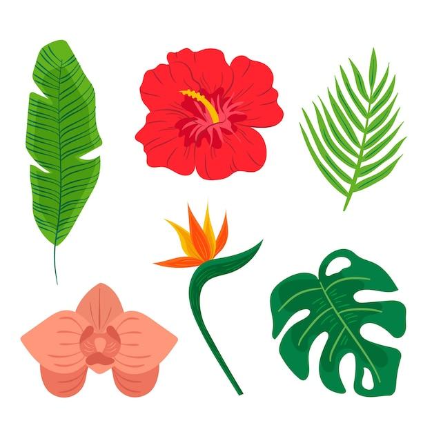 Tropische blad- en bloemencollectie Gratis Vector