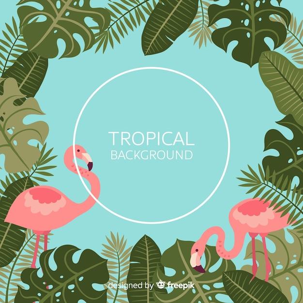 Tropische bladeren en flamingo's achtergrond Gratis Vector