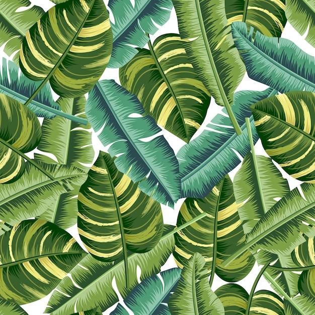 Tropische bladeren naadloos patroon Premium Vector