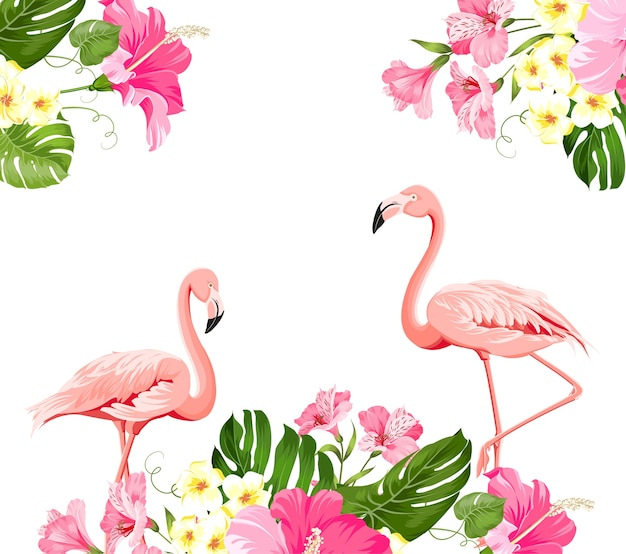 Tropische bloem en flamingo's op witte achtergrond. vector illustratie. Gratis Vector