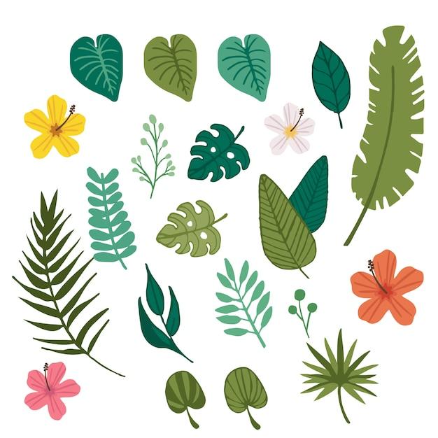 Tropische bloem en tropisch bladelement Premium Vector