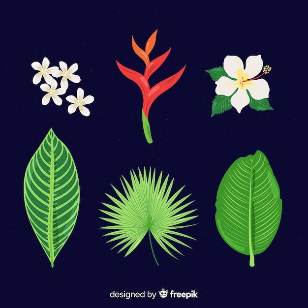 Tropische bloemen en bladeren collectie Gratis Vector