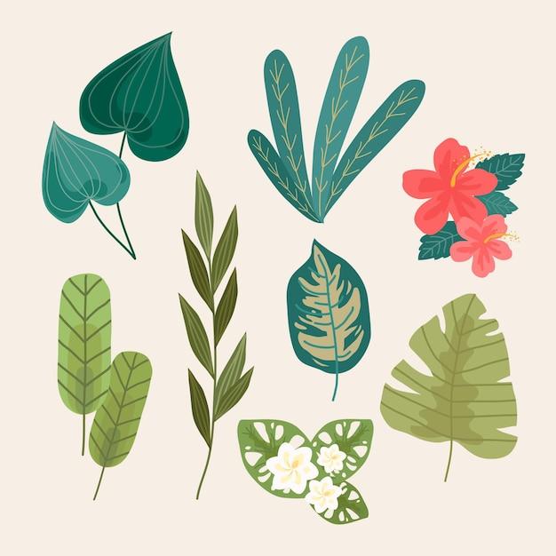 Tropische bloemen en bladeren instellen Gratis Vector