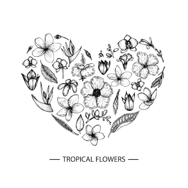 Tropische bloemen in een hartvorm. de grafische hand verdrinkt bloemenillustratie. hand getrokken plumeria, canna, hibiscus, orchidee geïsoleerd. schets stijl tropic ontwerpelementen Premium Vector