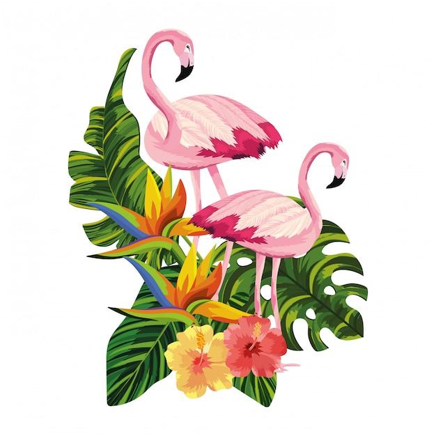 Tropische flamingo's cartoon Premium Vector