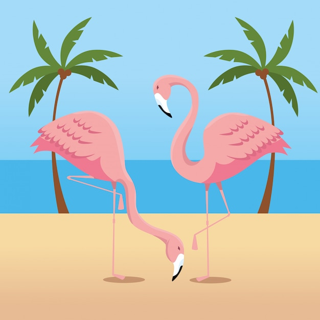 Tropische flamingo's met palmbomen in het strand Gratis Vector