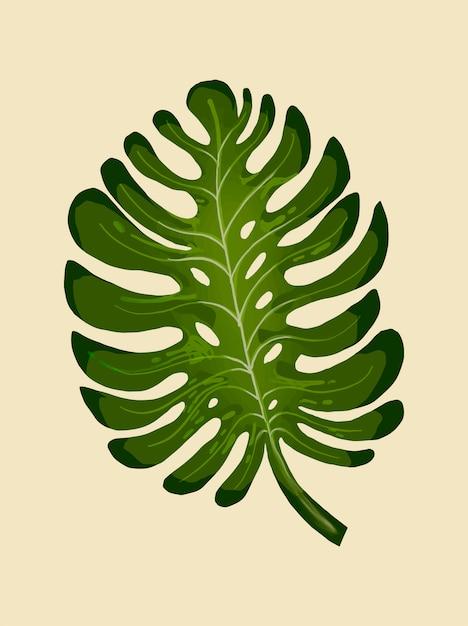 Tropische gespleten blad philodendron illustratie Gratis Vector