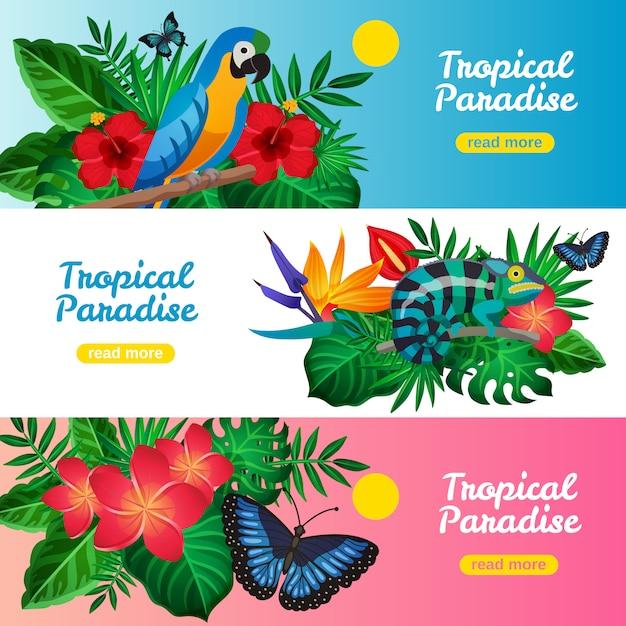 Tropische horizontale banner instellen Gratis Vector