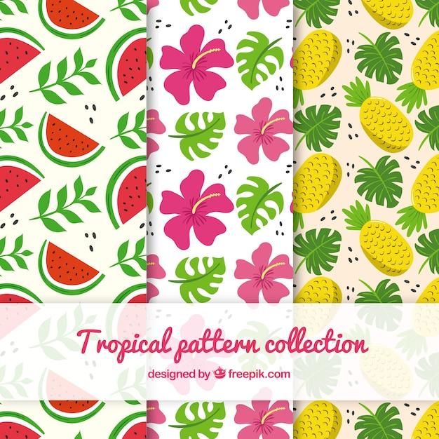 Tropische patroneninzameling met bloemen en vruchten Gratis Vector