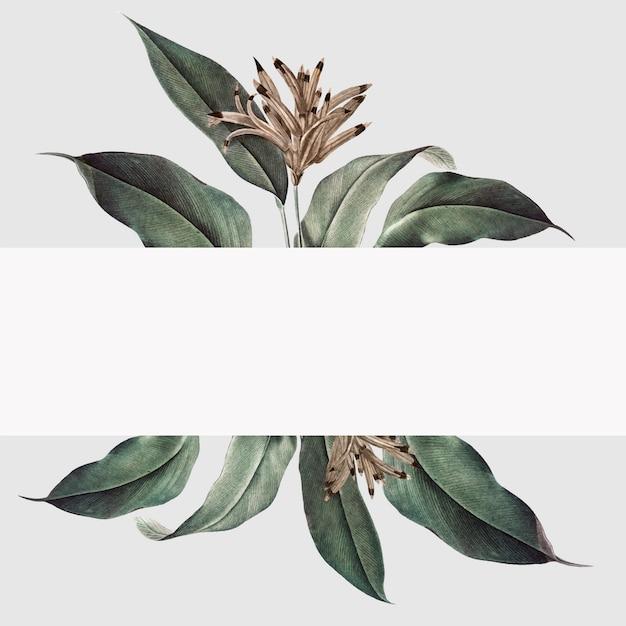 Tropische plant mockup illustratie Gratis Vector