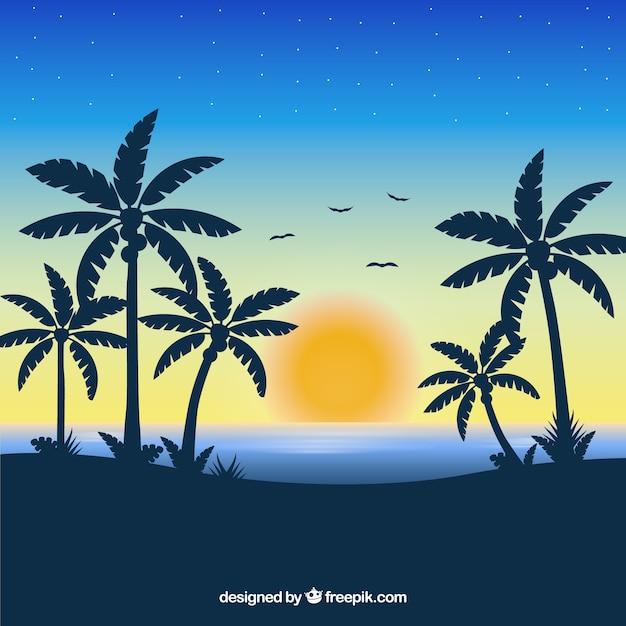 Tropische strandachtergrond met zonsondergang Gratis Vector