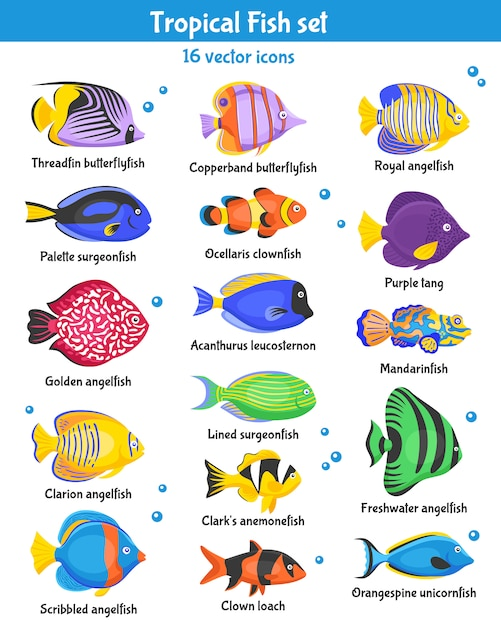 Tropische vissen icons set Gratis Vector