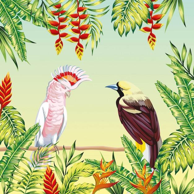 Tropische vogels frame bladeren en bloemen Premium Vector