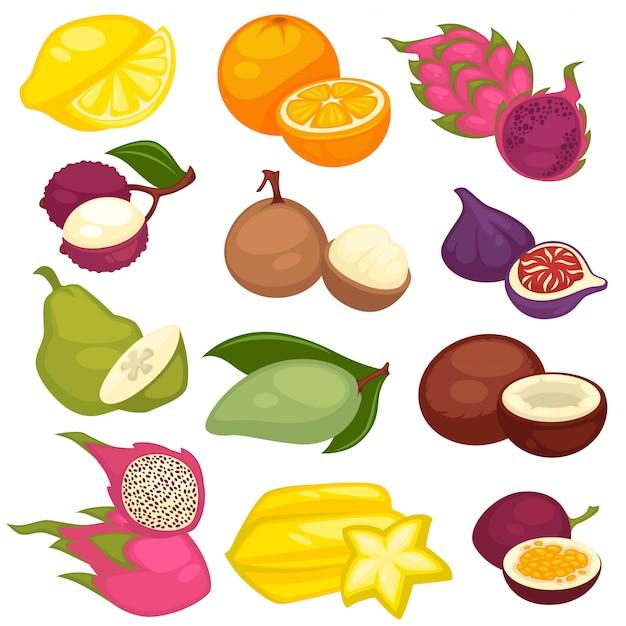 Tropische vruchten instellen. Premium Vector